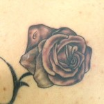 Black_and_Grey_Rose
